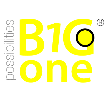Big1One Logo
